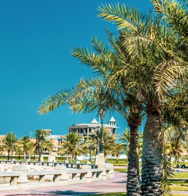 Hussainia Park